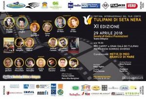 Festival del Cinema - Tulipani di Seta Nera 2018 - XI Edizione